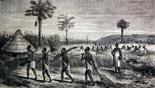 IndigenousSlavers002